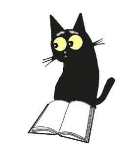 Orlando, gatto libraio